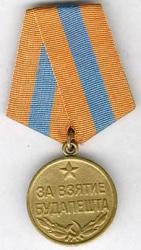 Budapest_medal